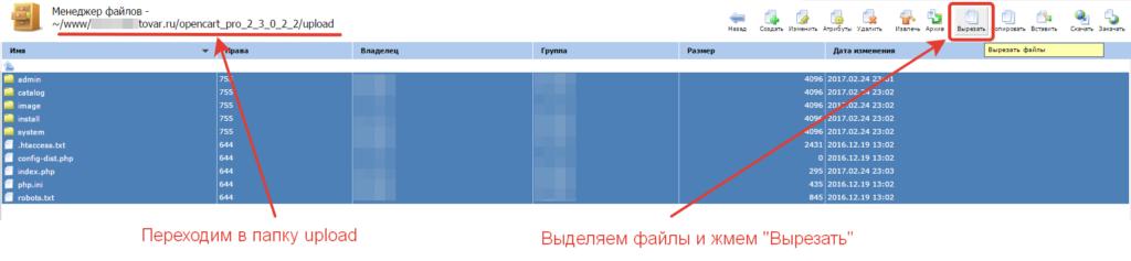Файлы в папке upload